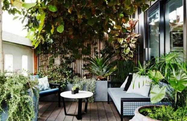 Une jolie terrasse